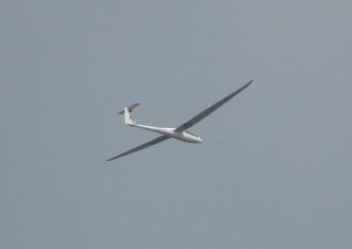 Glider - D-6514-01