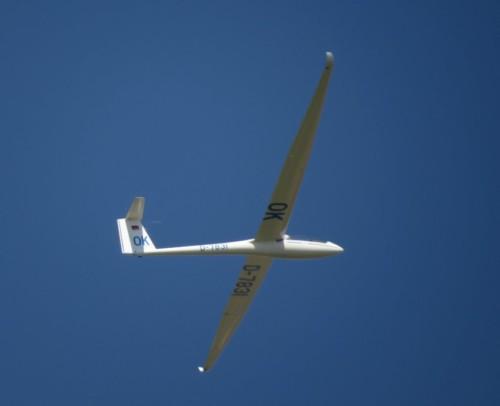Glider - D-7831-03