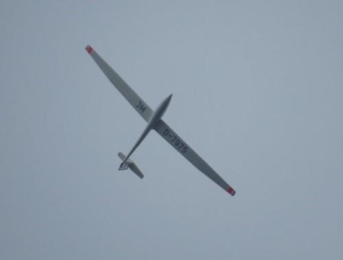 Glider - D-7975-01