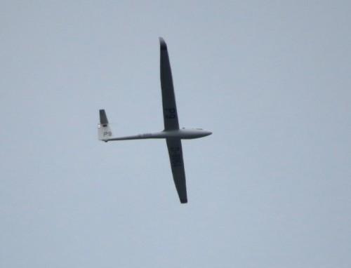 Glider - D-8864-01