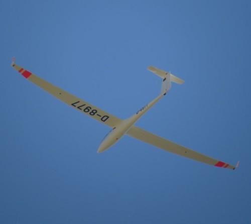 Glider - D-8977-05