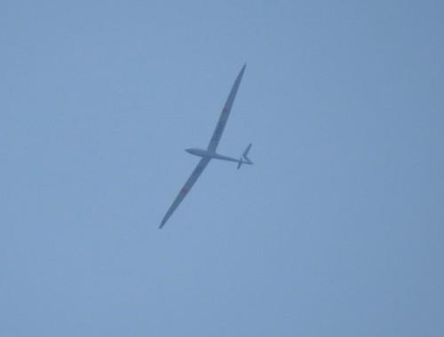 Glider - D-9041-01
