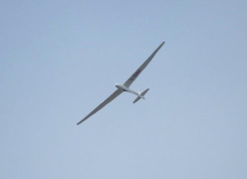Glider - D-9280-01