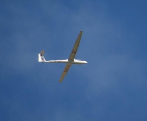 Glider - D-9459-02