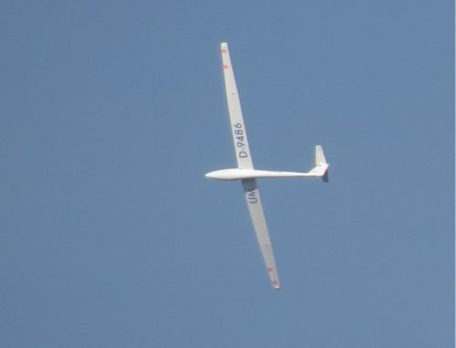 Glider - D-9486-01