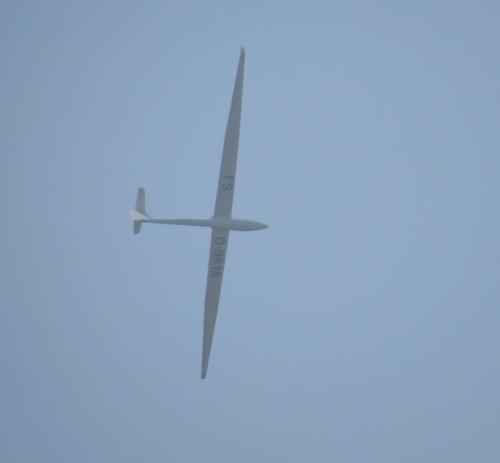 Glider - D-9618-02