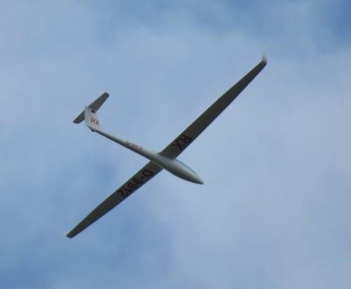 Glider - D-9912-01