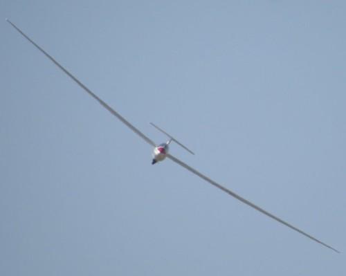 Glider - D-KEME-03
