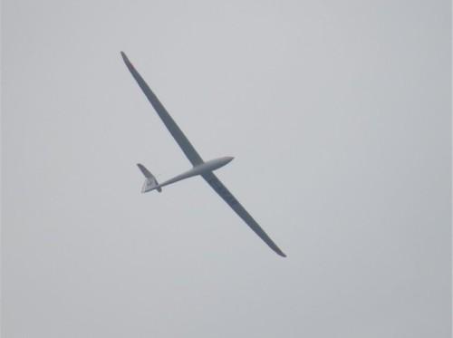 Glider - D-KKAR-01
