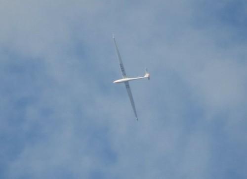 Glider - D-KKPP-01