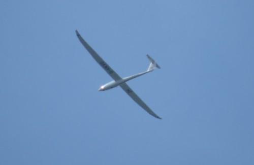 Glider - D-KKVO-01