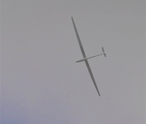 Glider - D-KKYD-01