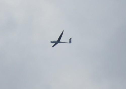 Glider - D-KLDG-01