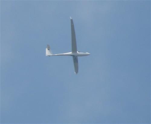 Glider - D-KOTZ-01