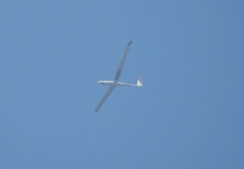 Glider - D-KPRD-01