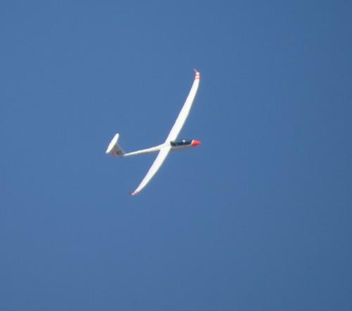Glider - D-KSAP-03