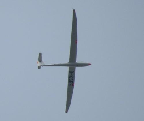 Glider - D-KSEE-01