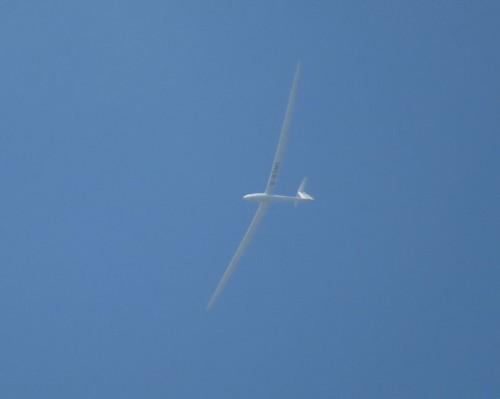 Glider - D-KTMT-01