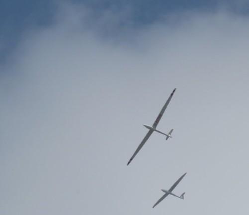 Glider - D-KVOE-03