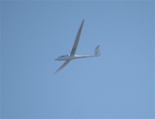 Glider - PH-1535-01