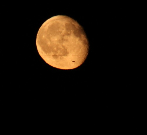 010 - 2011-Moon+Unknown