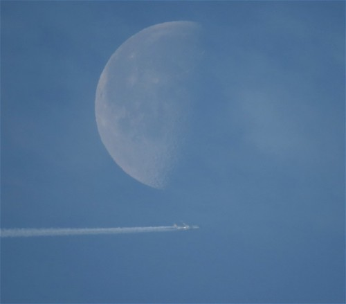 029 - 2018-Moon+VietnamAirlines
