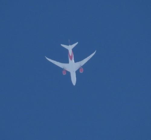 Avianca01