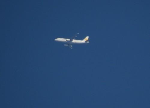 AvionExpress01