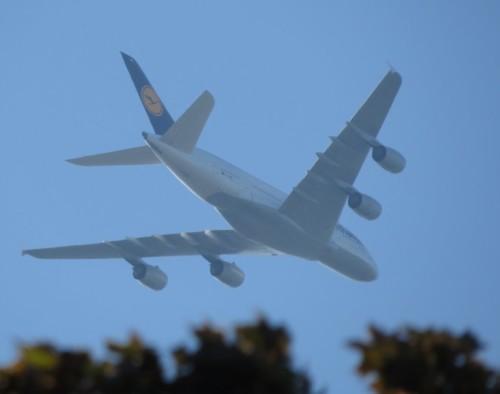 Lufthansa09