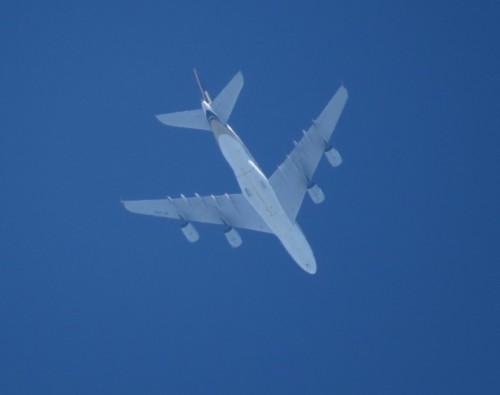 SingaporeAirlines03