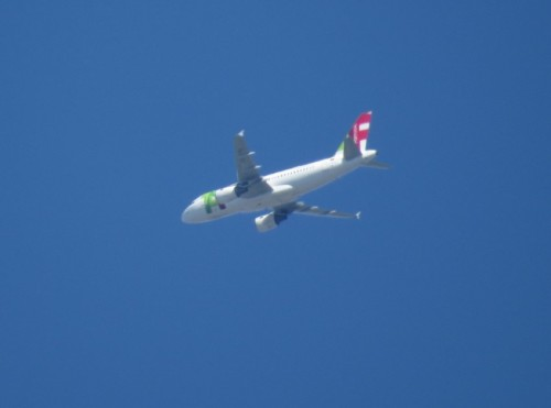 TAPPortugal03