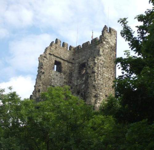 BurgruineDrachenfels006-2008