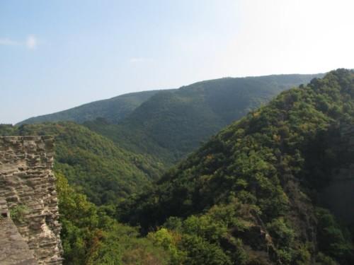 BurgAre007-2009