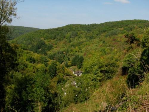 BurgAre011-2009