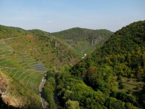 BurgAre013-2009