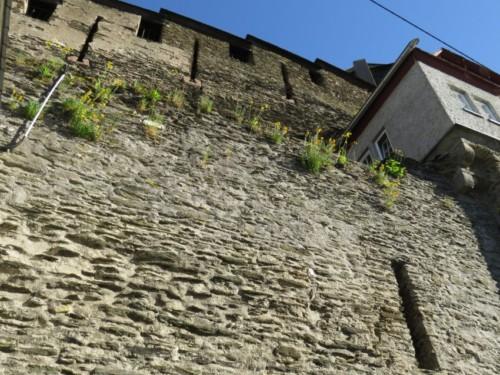 BurgStahleck008-2018