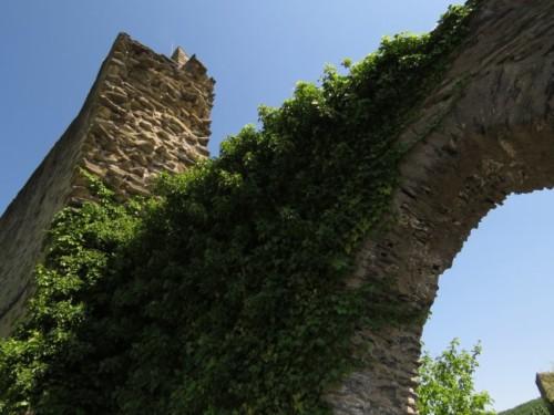 BurgSterrenberg017-2018