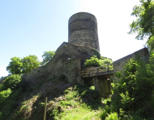 RuineStahlenberg028-2018