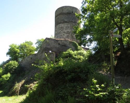 RuineStahlenberg029-2018
