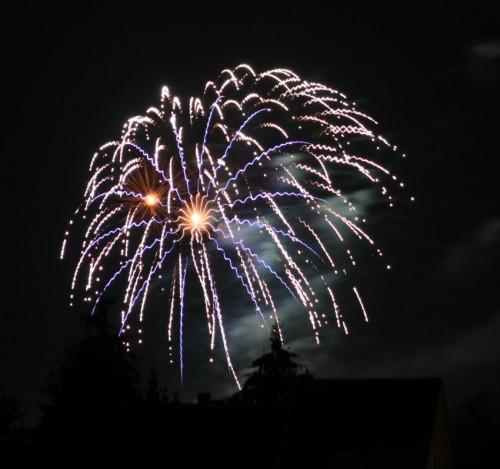 Firework008