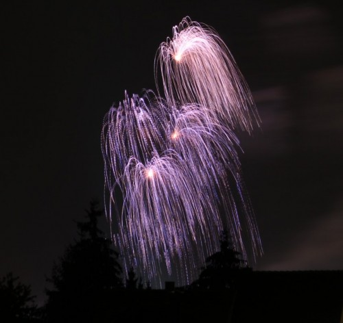 Firework010