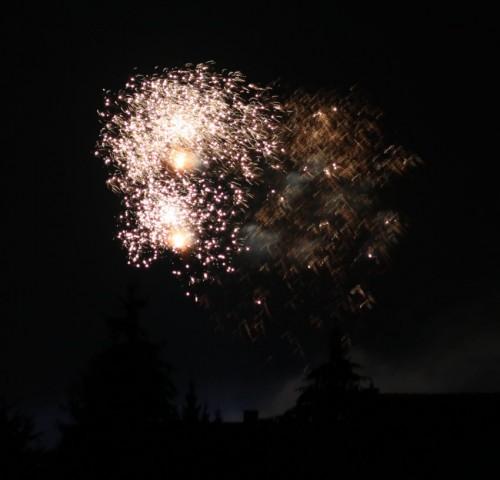 Firework017