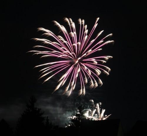 Firework050
