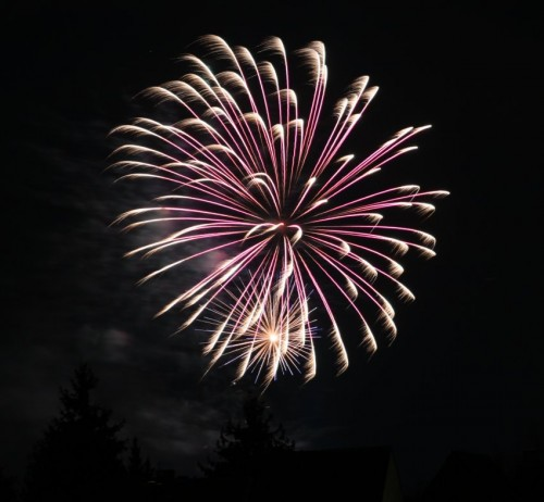 Firework051