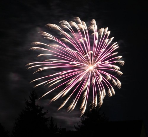 Firework052