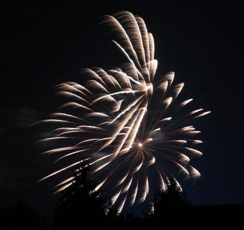 Firework077