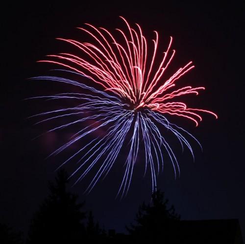 Firework078