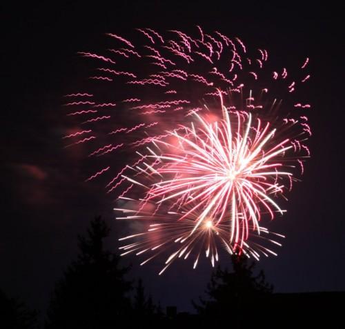 Firework081