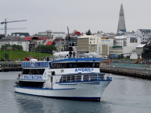 Others - Whale watching - Iceland,Special Tours - Andrea