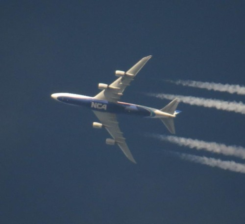 NipponCargoAirlines05